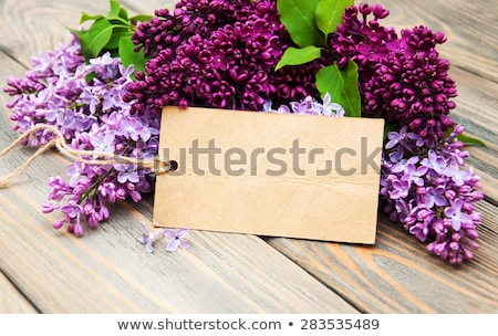 Lilac Flowers With Empty Tag Foto d'archivio © Es75