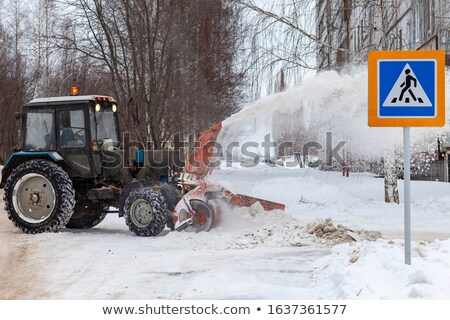 congelada · plantas · neve · nevasca · montanhas · árvore - foto stock © meinzahn