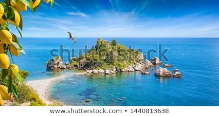 Ionian seaside Stock photo © simply