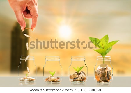 Financial Prosperity Security Stock photo © Lightsource