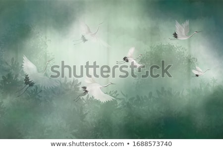 paar · witte · nest · paal · plaats · vogel - stockfoto © romvo