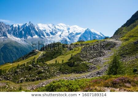 Aiguille du Midi - Mont Blanc Massif Stock photo © RazvanPhotography