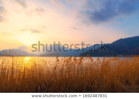 farm in the valley with a lake in the mountains stock photo © all32