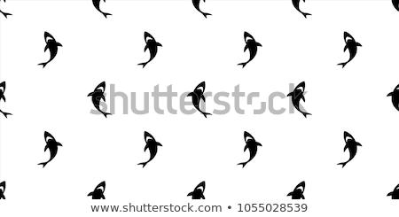 Vízalatti tapéta cápa tengerpart papír hal Stock fotó © carodi