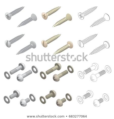 Nuts, Bolts and Washers Hardware Isometric Set Stock photo © jeff_hobrath