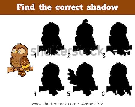 Match ombra ragazzi puzzle gioco educativo Foto d'archivio © adrian_n