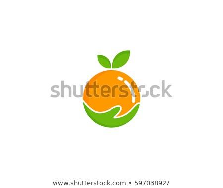 Stock photo: Apple Fruit Nutrition Logo Symbol Icon Vector Design Illustration