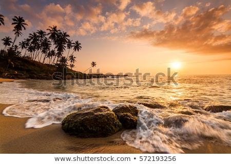 Sri Lanka piros földgömb tükröződő óceán 3d illusztráció Stock fotó © Harlekino