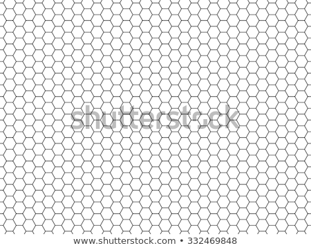 Honey comb pattern cells vector background. stock photo © yopixart
