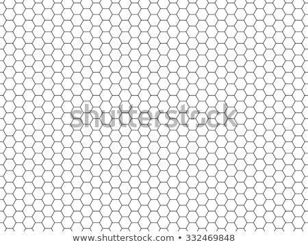 Méz fésű minta vektor citromsárga végtelenített Stock fotó © yopixart