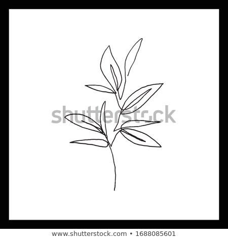 Sziluett virág lineáris stílus ikon boldog Stock fotó © Olena
