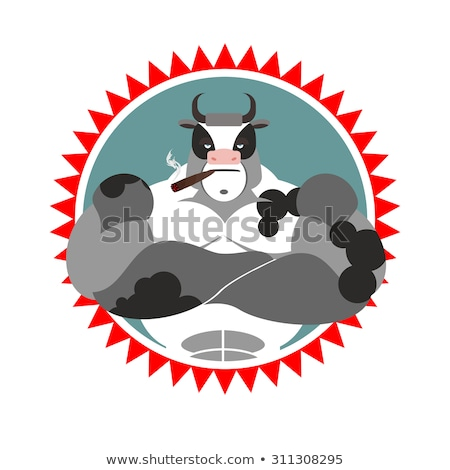 Fort Bull verres cigare logo sport Photo stock © popaukropa