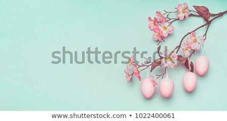 Paskalya · yuva · pembe · paskalya · yumurtası · çiçekler · mutlu - stok fotoğraf © zerbor