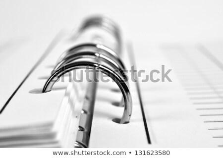 Közelkép nyitva napló fehér üzlet szeretet Stock fotó © wavebreak_media