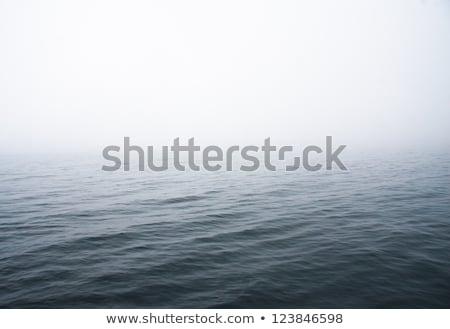 horizon · brouillard · bleu · mer · océan · vecteur - photo stock © sidmay