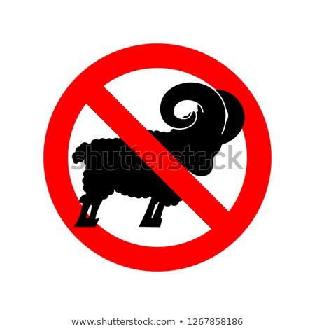 Stop ram. Attention farm animal. Red prohibitory road sign. Ban  Stock photo © popaukropa