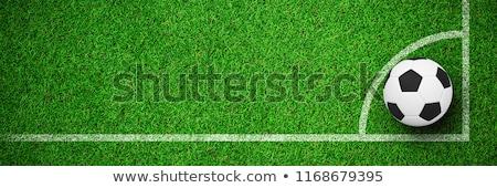 Football against close up view of astro turf Stock photo © wavebreak_media