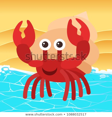 Hermit Crab Next to the c Stock photo © bluering