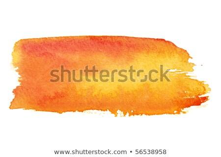 penseel · illustratie · ingesteld · kleurrijk · ontwerp · verf - stockfoto © sarts