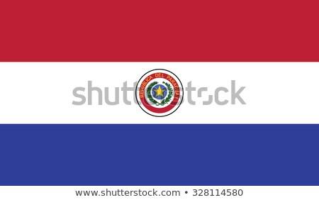 Paragwaj banderą biały projektu farby sztuki Zdjęcia stock © butenkow