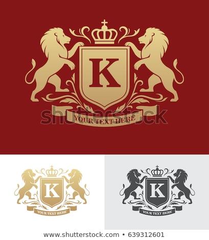 щит гребень лев пальто оружия эмблема Сток-фото © Krisdog