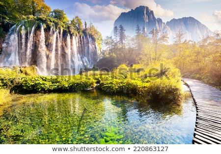 rivier · bos · watervallen · hdr · voorjaar · blad - stockfoto © vwalakte