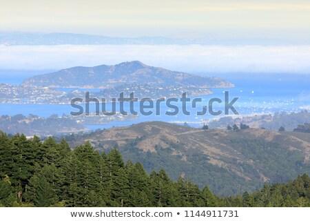 Angyal sziget Kalifornia USA tájkép tenger Stock fotó © yhelfman