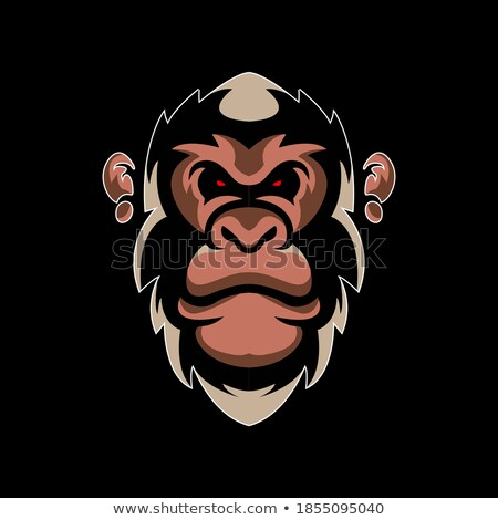 Desenho animado zangado voleibol jogador macaco olhando Foto stock © cthoman