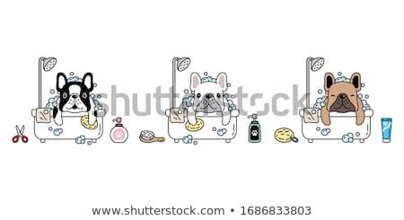 Cartoon husky bano ilustración toma sonriendo Foto stock © cthoman