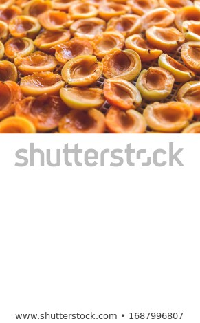 Apricot dried in the dryer-dehydrator. A way to preserve vitamin Stock photo © TanaCh