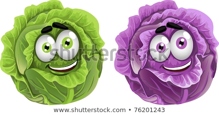 Yeşil lahana kafa karikatür yalıtılmış vektör Stok fotoğraf © robuart