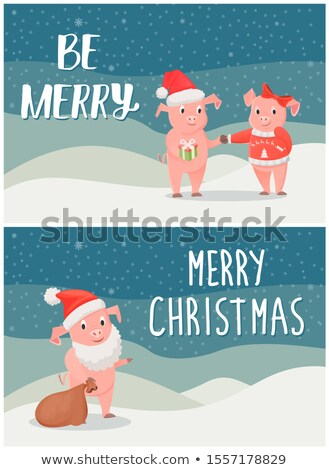 Be Merry Wishes on Christmas, Male, Female Piglets Stock photo © robuart