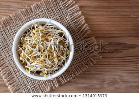 Photo stock: Semences · bol · espace · de · copie · haut · vue · alimentaire