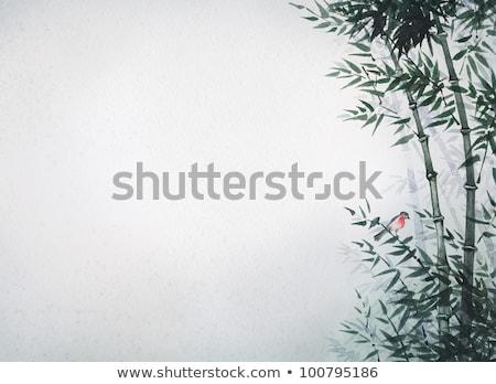 A bird on bamboo border Stock photo © bluering