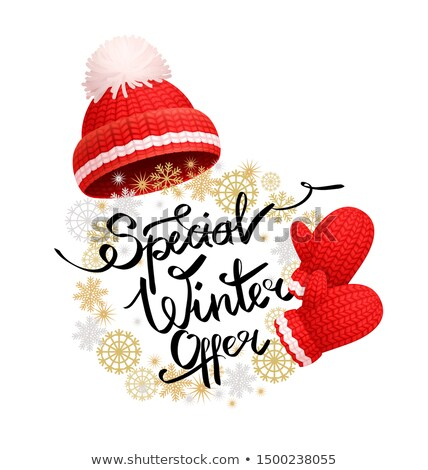 Special Winter Offer Promo Banner Red Hat, Glove Stock photo © robuart