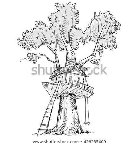 Swing albero illustrazione natura sfondo arte Foto d'archivio © colematt