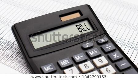 Mutui parola bilancio display finanziare banca Foto d'archivio © Zerbor