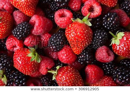 fresh blackberries and strawberries stock photo © alex9500