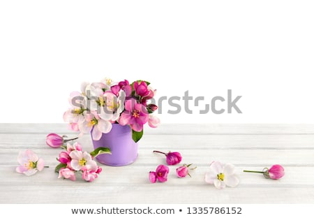 hello spring flowers in bucket concept stock photo © colematt