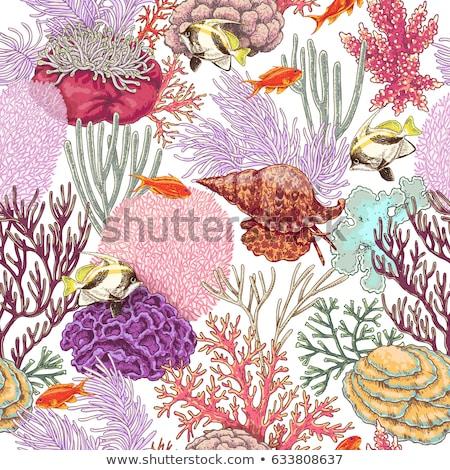 ベクトル カラフル 海 海 生活 ストックフォト © user_10144511