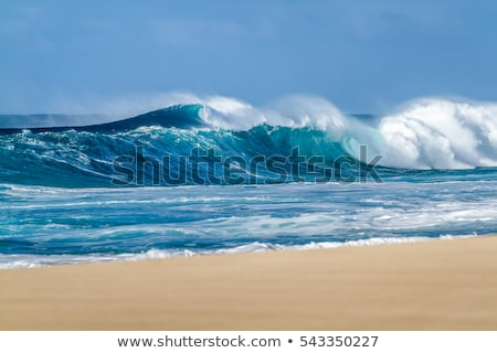 Oceaan golven strand goud zand Stockfoto © hamik