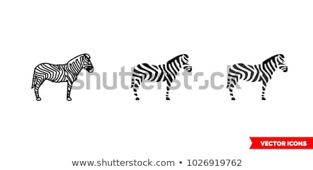 Zebra icon vector schets illustratie teken Stockfoto © pikepicture