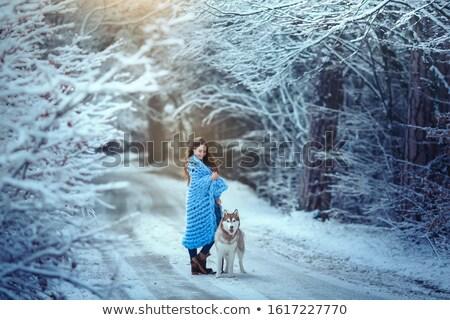 Jonge vrouw bos lopen huisdier husky Stockfoto © ElenaBatkova
