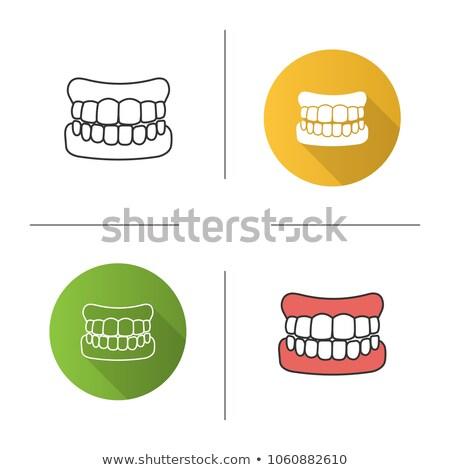 Establecer falso dientes vector signo Foto stock © pikepicture