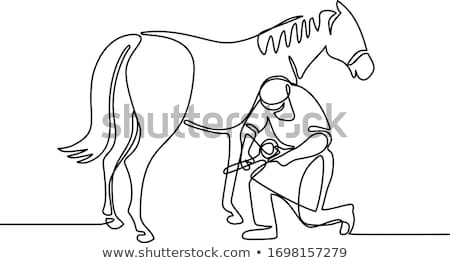 Farrier and Horse Continuous Line Stock photo © patrimonio