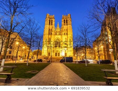 Katedrális Brüsszel Belgium középkori római katolikus Stock fotó © dmitry_rukhlenko