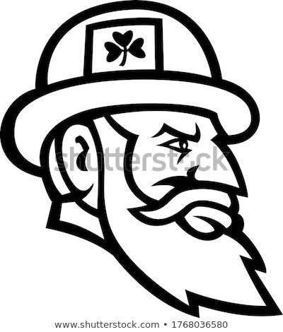 Cabeça irlandês vista lateral mascote preto e branco Foto stock © patrimonio