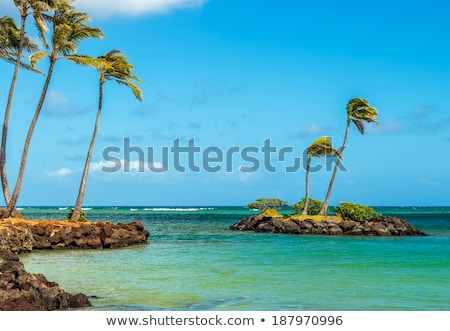 oceaan · water · af · kust · Hawaii · horizontaal - stockfoto © pixelsnap