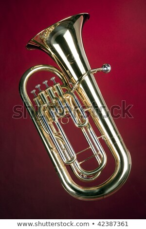 Tuba Bass Euphonium Isolated on Red stock photo © mkm3