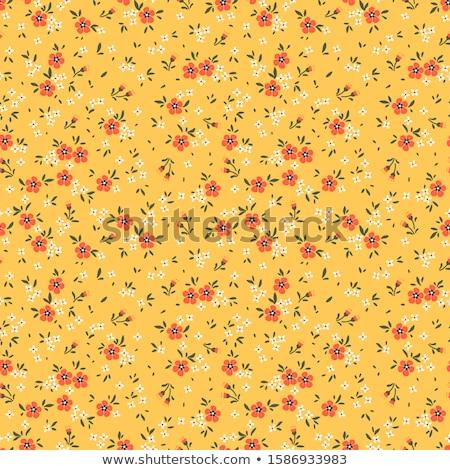 オレンジ デイジーチェーン 美しい 明るい 花弁 花 ストックフォト © gant